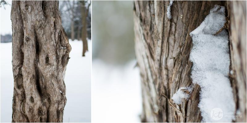 Snow2015Web-1