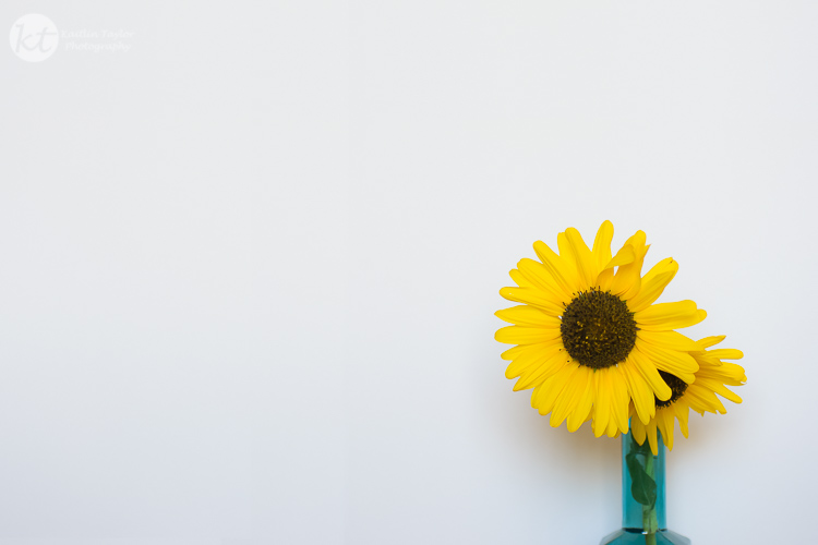 034-150918-SunflowerBlueVase-Web