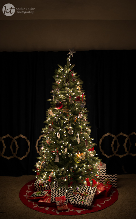 1215-ChristmasTree-Web1